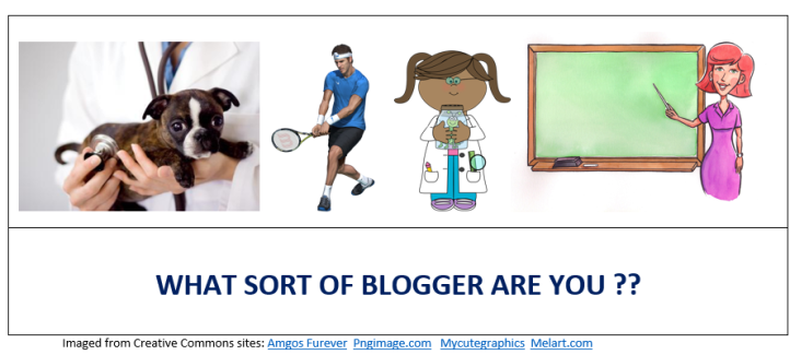 WHAT SORT OF BLOGGER ARE YOU?
